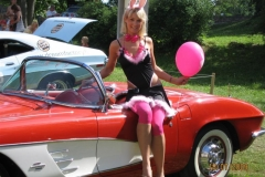 American Beauty 2009